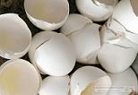 broken-eggs.jpg