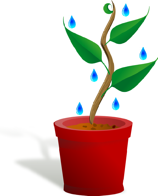 Plant_Flower_Clipart_Pictures.png